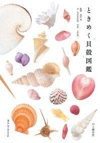 ときめく貝殻図鑑 Kinoppy電子書籍ランキング