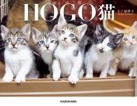 HOGO猫 Kinoppy電子書籍ランキング